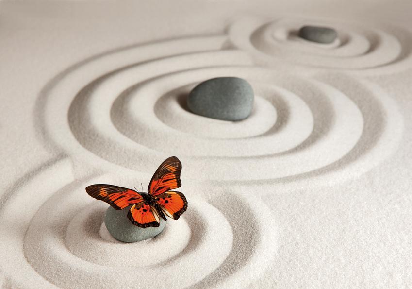 Schmetterlinge im Sand