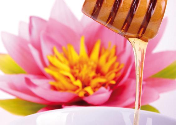 Honiglöffel und Lotusblüte